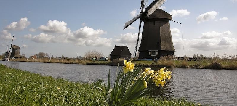 Inspreekreactie Bij Provincie Noord-Holland Over Cultuurbeleid 2017-2020