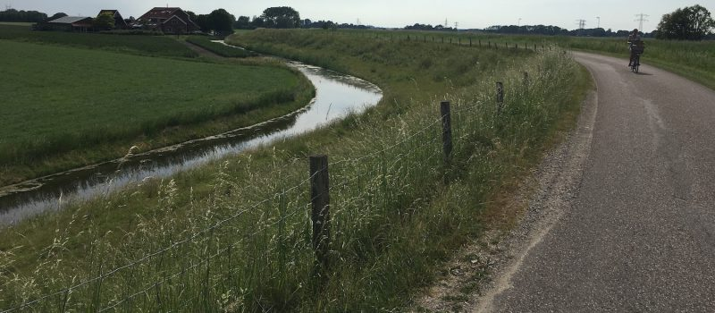 Hulp Adapt Voor Starnmeer Bij Dijkversterking